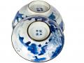 blue_plate1